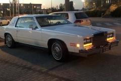 Cadillac1984Gunnar